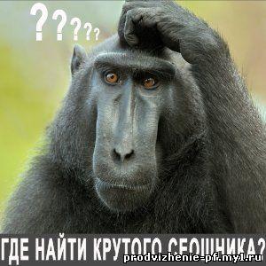 Кому доверить продвижение вечными ссылками и поведенческими факторами в России